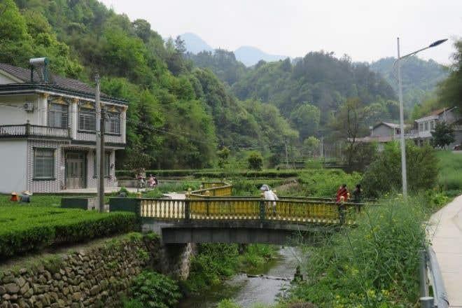Shimen Green Mountain Origin